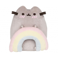 Pusheen with Rainbow